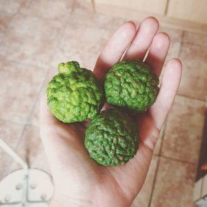 плод бергамот