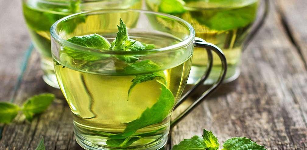 зеленый чай вред для печени